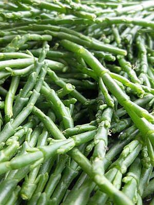 Zee groenten